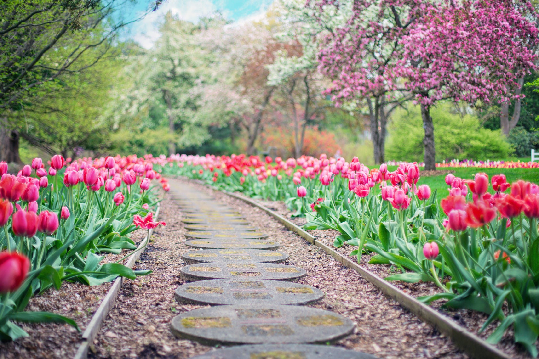 Je tuin lente klaar maken
