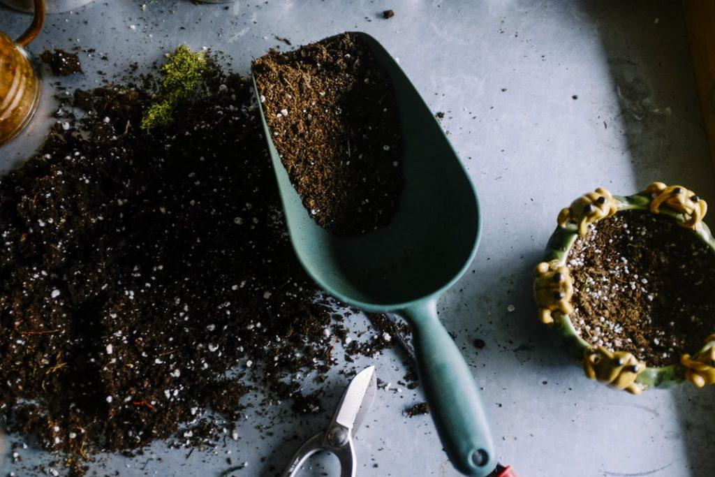 planten van eenjarige om tuin lente klaar te maken