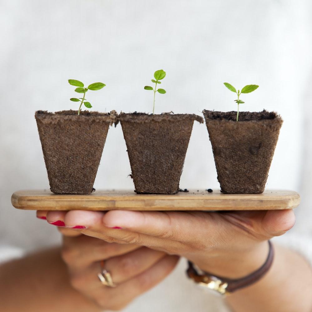 ontwerp van kleine tuin doe je zo